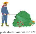 Worker Spraying Bushes of Plants, Roses Flora 54350171