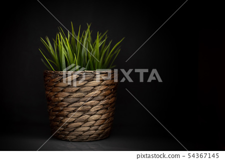 Basket with fresh green grass 54367145