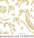 Forget-me-not flowers. Botanical illustration. Good for cosmetics, medicine, treating, aromatherapy 54369100