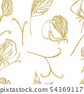 Sweet pea flowers drawing and sketch with line-art on white backgrounds. Floral pattern with flowers 54369117
