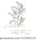 Sweet pea flowers drawing and sketch with line-art on white backgrounds. Botanical plant 54369119