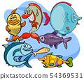 funny fish cartoon animal characters group 54369531