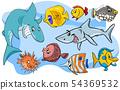 fish marine animal cartoon characters group 54369532