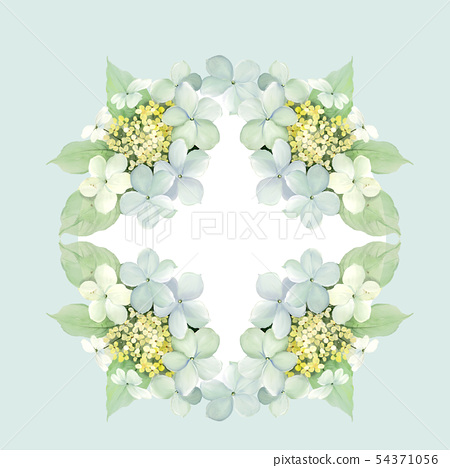 美麗的水彩繡球花 54371056