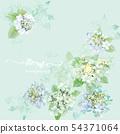 美麗的水彩繡球花 54371064