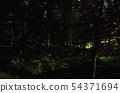 Hot spring of Zeni park 54371694