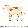 Cow Rustic, Livestock Domestic Animal Farming 54372240