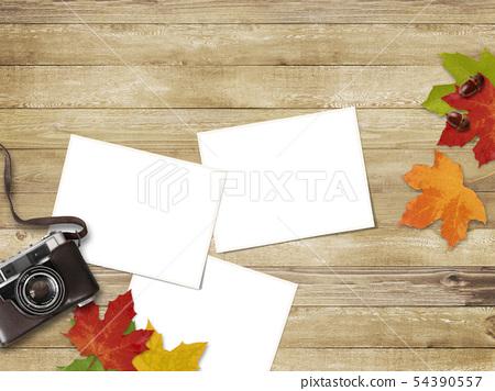 背景木纹 - 照相机照片秋天葡萄酒框架 54390557