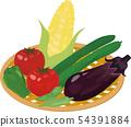 夏季蔬菜拼盤 54391884