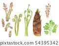 Wild vegetables set watercolor 54395342