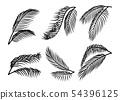 Palm Leaves silhouette set 54396125