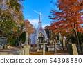 Autumn Takao Stupa in Hachioji, Tokyo 54398880