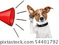 dog listening with big ear 54401792