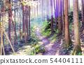 산길 숲 속으로 54404111
