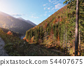 Golden autumn in The Vratna valley 54407675