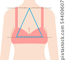 Droopy chest isosceles triangle 54409607