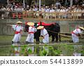 Sumiyoshi Taisha Mita Uejin 54413899