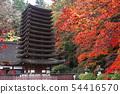 ศาลเจ้า Tanzan ในฤดูใบไม้ร่วง - ทิวทัศน์ของ Yamato- 54416570
