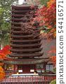 ศาลเจ้า Tanzan ในฤดูใบไม้ร่วง - ทิวทัศน์ของ Yamato- 54416571