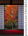 พฤศจิกายน Yunryu-in-Kyoto วัด Izuminji- 54416621