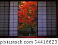 พฤศจิกายน Yunryu-in-Kyoto วัด Izuminji- 54416623