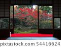 พฤศจิกายน Yunryu-in-Kyoto วัด Izuminji- 54416624
