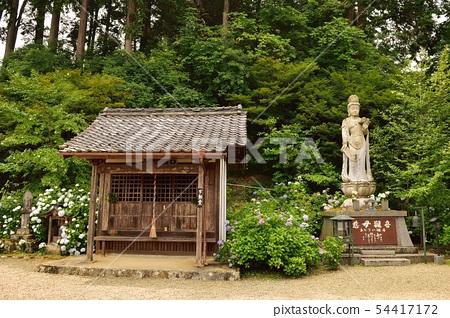 在京都府福知山市觀音寺 54417172