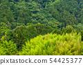 팔레트 지게차 물류 창고 쌓는 자연 산 산림 54425377