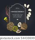 Dark badge design with feather grass, lotus, lunaria 54430699
