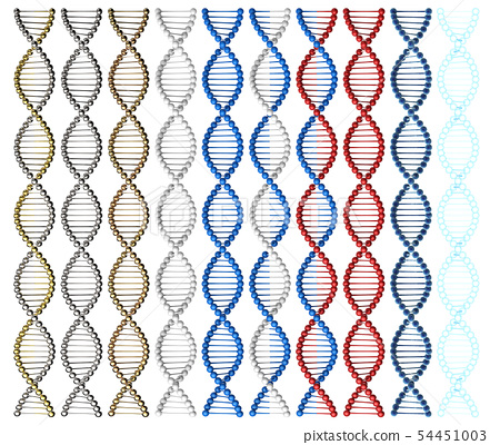 Dna helix structure 54451003