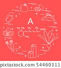 Foods rich in vitamin A 54460311