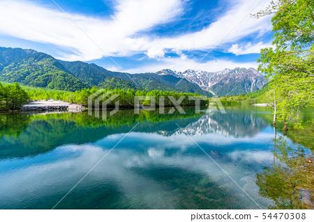 《長野縣》初夏上高地,新鮮的綠色大正池 54470308