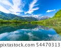 《長野縣》初夏上高地,新鮮的綠色大正池 54470313