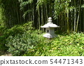 Bamboo and Stone Lanterns at the Fort Worth Botanical Gardens 54471343
