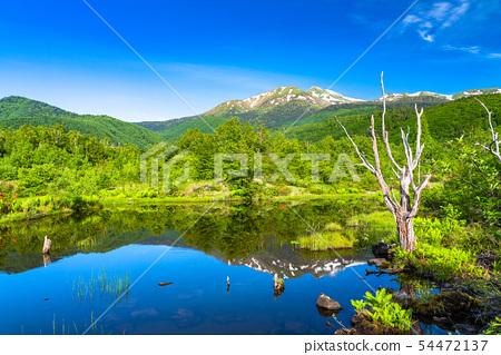 <长野县>新鲜的绿色Norikura高原/大森池 54472137