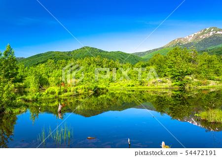 長野長野縣新鮮的綠色Nokori高原,Osome池塘 54472191
