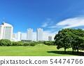 푸른 하늘의 거리와 공원 54474766