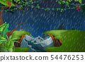 landscape of jungle at the river in the rainday 54476253