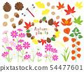 秋天的植物 54477601