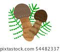 Matsutake mushroom mushroom 54482337