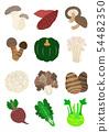 가을 야채 Autumn vegetables 54482350