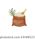 Brown jute sackcloth bag filled with white grain and rice plant. 54488523