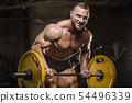 健美运动者 健身 健康 54496339