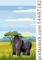 Gorillas cute cartoon style in background savannah Africa, isolated, vector 54497182