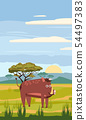 Wild boar cute cartoon style in background savannah Africa, isolated, vector 54497383