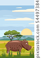 Hippo cute cartoon style in background savannah Africa, isolated, vector 54497384