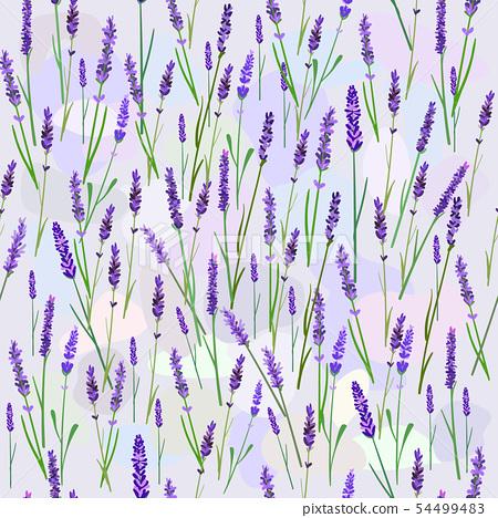 lavender seamless pattern 54499483