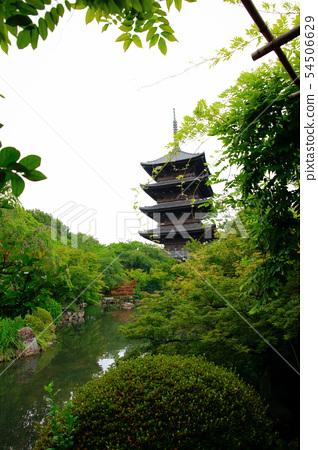 일본 정원 54506629