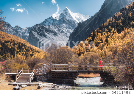 Holy Chana Dorje mountain in autumn pine forest 54511498
