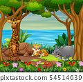 Wild animals living in the beautiful forest 54514639